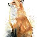 Fox Watercolor by Olga Shvartsur