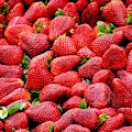Fraises by Top Wallpapers