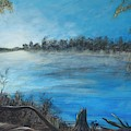 Framing The Suwannee by Renee Ober