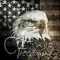Freedom by Anita Hubbard