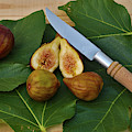 Fresh Figs by Angelo DeVal