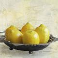 Fresh Lemons by Elisabeth Lucas