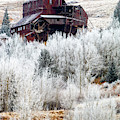 Frost On Abandoned Mining District by Steve Krull