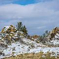 Frosting On The Backbone by Jon Burch Photography