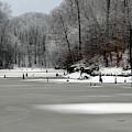 Frozen Alum Creek by Angela Murdock