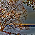 Frozen Canandaigua Lake At Dawn by William Norton