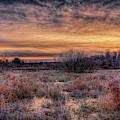 Frozen Pond Sunrise by Dale Kauzlaric