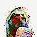Funny Sloth by Nikolay Radkov
