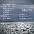Gallery Tour by Ann Horn