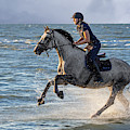 Galloping Horse In Sea by Arterra Picture Library