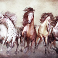 Galloping Horses Magnificent Seven by Shanina Conway