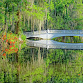 Garden Bridge Reflection by Dan Sproul