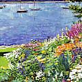Garden By The Bayshore by David Lloyd Glover