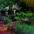 Garden Fairy Fantasy by Robert G Kernodle