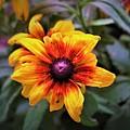 Garden Gem by Jenna Monroe