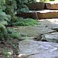 Garden Landscape - Stone Stairs by Colleen Cornelius
