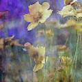 Garden Rain 7008 Idp_2 by Steven Ward