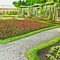 Garden Stroll by Allen Nice-Webb