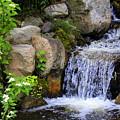 Garden Waterfall by Cynthia Guinn