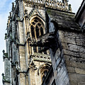 Gargoyle On Doncaster Minster by Scott Lyons