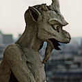 Gargoyle Notre Dame Cathedral, Paris France April 1978 by California Views Archives Mr Pat Hathaway Archives