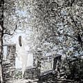 Ghost Of Vezio Castle Lake Como Italy II by Joan Carroll