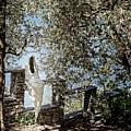 Ghost Of Vezio Castle Lake Como Italy by Joan Carroll
