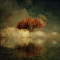 Giant Oak In A Dream by Jan Keteleer
