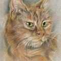 Ginger Tabby Cat With Black And White Whiskers by MM Anderson