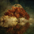 Giant Oak And Full Moon by Jan Keteleer