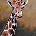 Giraffe Portrait By Alan M Hunt by Alan M Hunt