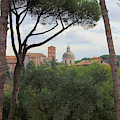 Girl Sitting On A Bench Beneath Umbrella Pines On Palatine Hill Rome Italy by Angela Rath