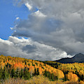 Glowing Aspens In The Shadow Of Sunshine Mountain by Ray Mathis