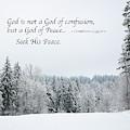 God's Winter Wonderland by Kirt Tisdale