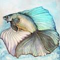 Goldfish by Agnes Isabel