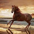 Gold Runner by Melinda Hughes-Berland