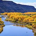 Golden Autumn Trees San Juan River Landscape by Brenda Landdeck