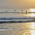 Golden Daybreak by Laurie Hein