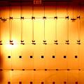 Golden Glass Doors by Ed Weidman