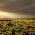 Golden Morning At Baslow Edge, Derbyshire by Scott Lyons