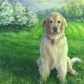 Golden Retriever by Nicole Troup