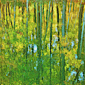 Golden Tapestry Of Autumn Reflections by Ola Allen
