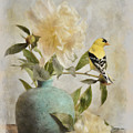 Goldfinch And The Peonies by Jai Johnson