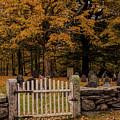 Gone But Not Forgotten by Jeff Folger