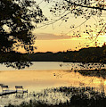 Good Morning Sunshine by Robert Frank Gabriel