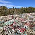 Graffiti On Bald Rock by Flavia Westerwelle