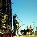 Grateful Dead Live by Ed Perlstein