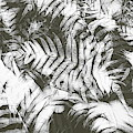 Gray Abstract Foliage Pattern by Andrea Anderegg
