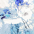 Great Egret Wings Digital Art Blue Square  by Carol Groenen