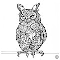 Great Horned Owl by Amy E Fraser